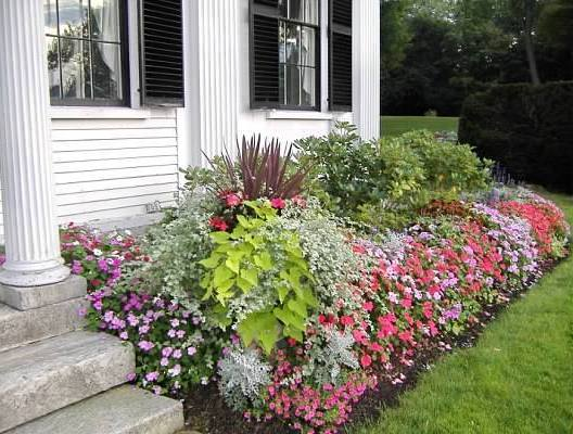 Flower beds in early summer. Photo: Catherine Elliott, Asa Waters Mansion.