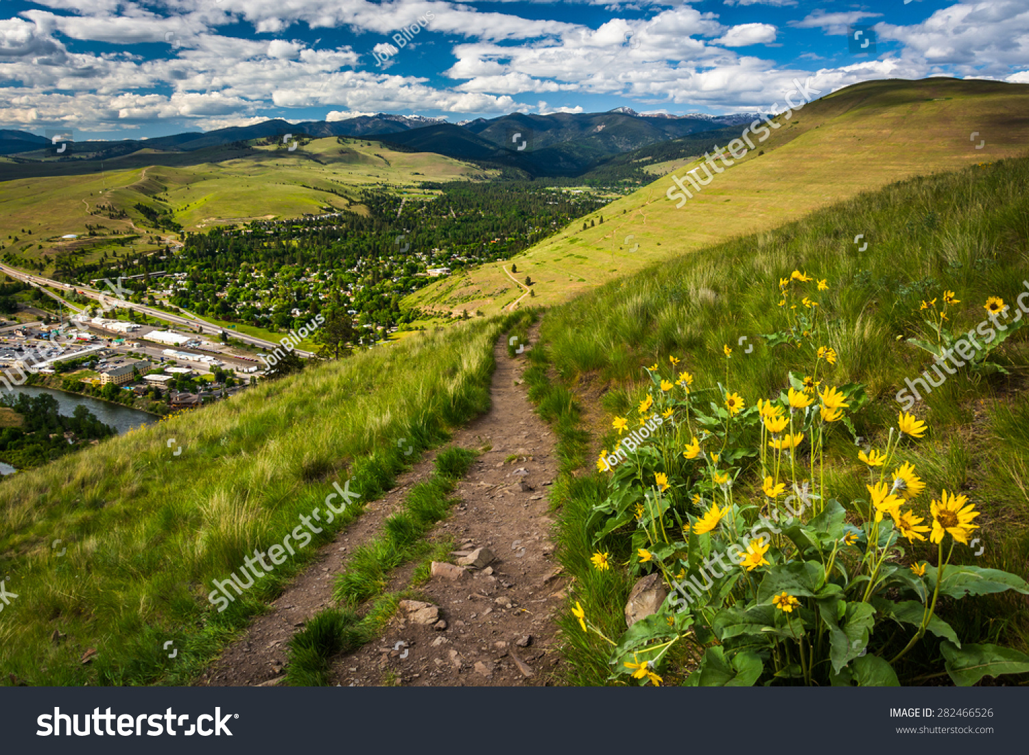 stock-photo-trail-and-flowers-on-mount-sentinel-in-missoula-montana-282466526.jpg