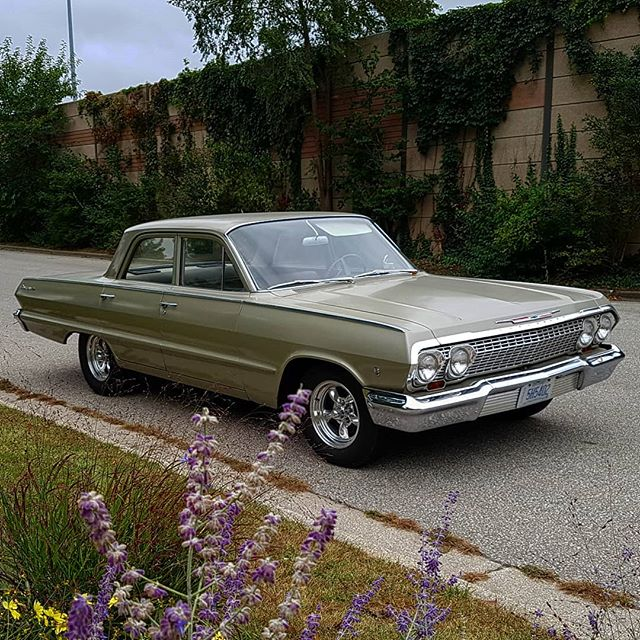 #motorcrushmonday I love my wife and I love my kids... but there's something about a boy's first car that you don't ever forget. Lucky for me I still have mine, 1963 Chevy Biscayne. @chevroletcanada . . . #countrymusic #music #singersongwriter #originalmusic #guitar #southernrock #rocknroll #canadiancountrymusic #canadianmusic #countryboy #countrygirl #canada #sarnia #musician #austin #blues #bluesmusic #workingclass #nashville #rockmusic #band #redneck #honkytonk #bluecollar #countryandwestern #ontario #countryartist #countrysinger