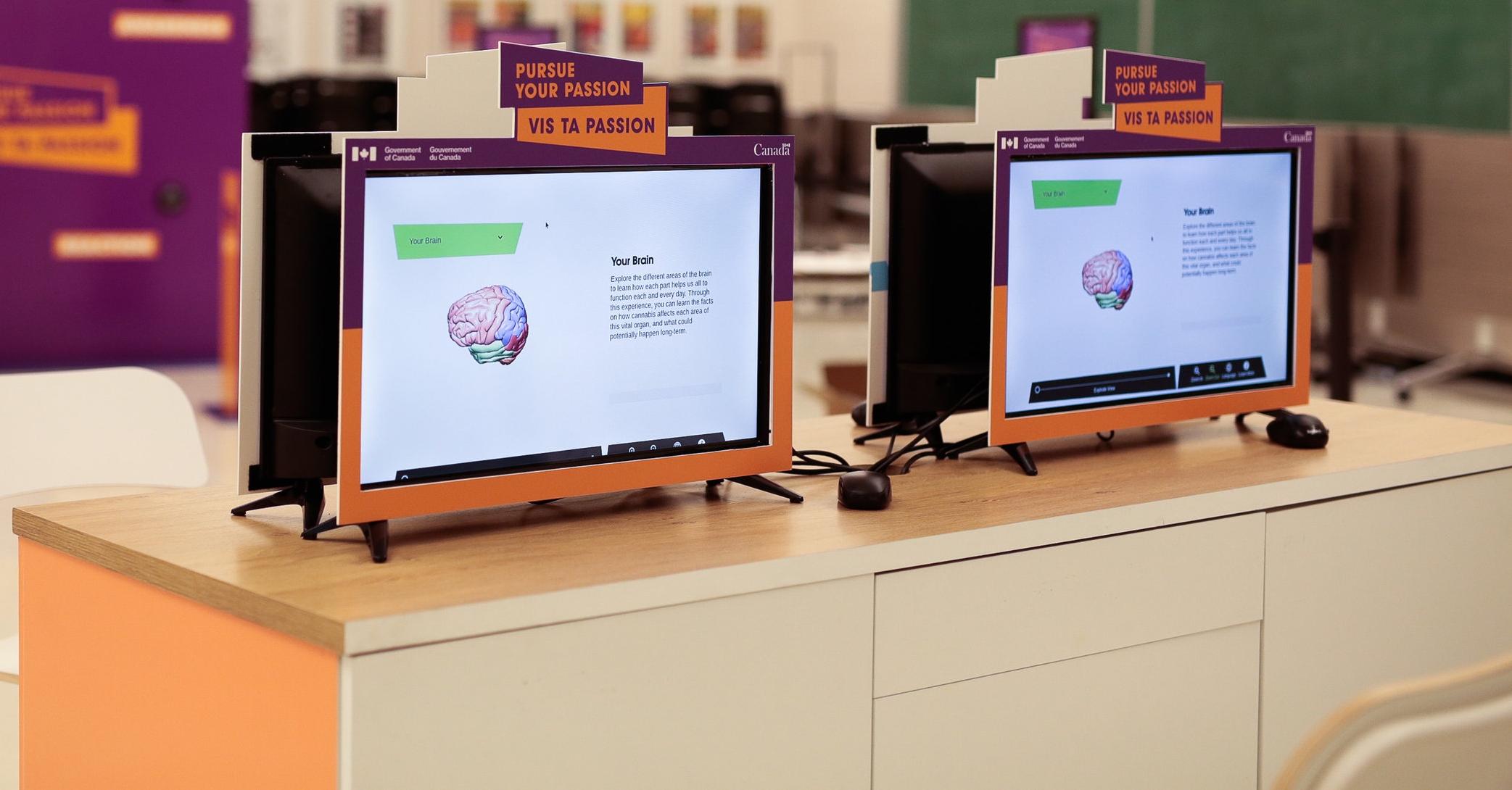 Le cerveau 360 sur des écrans d'ordinateur