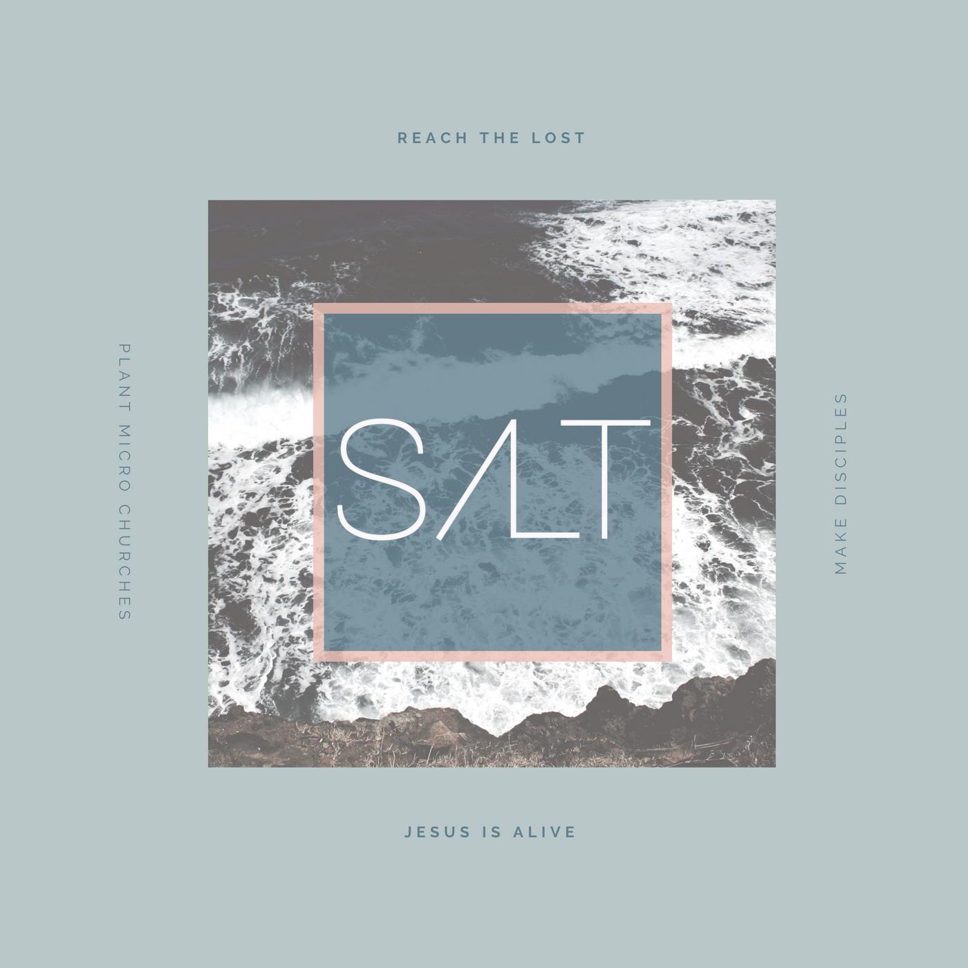 salt podcast art 2 2.jpg