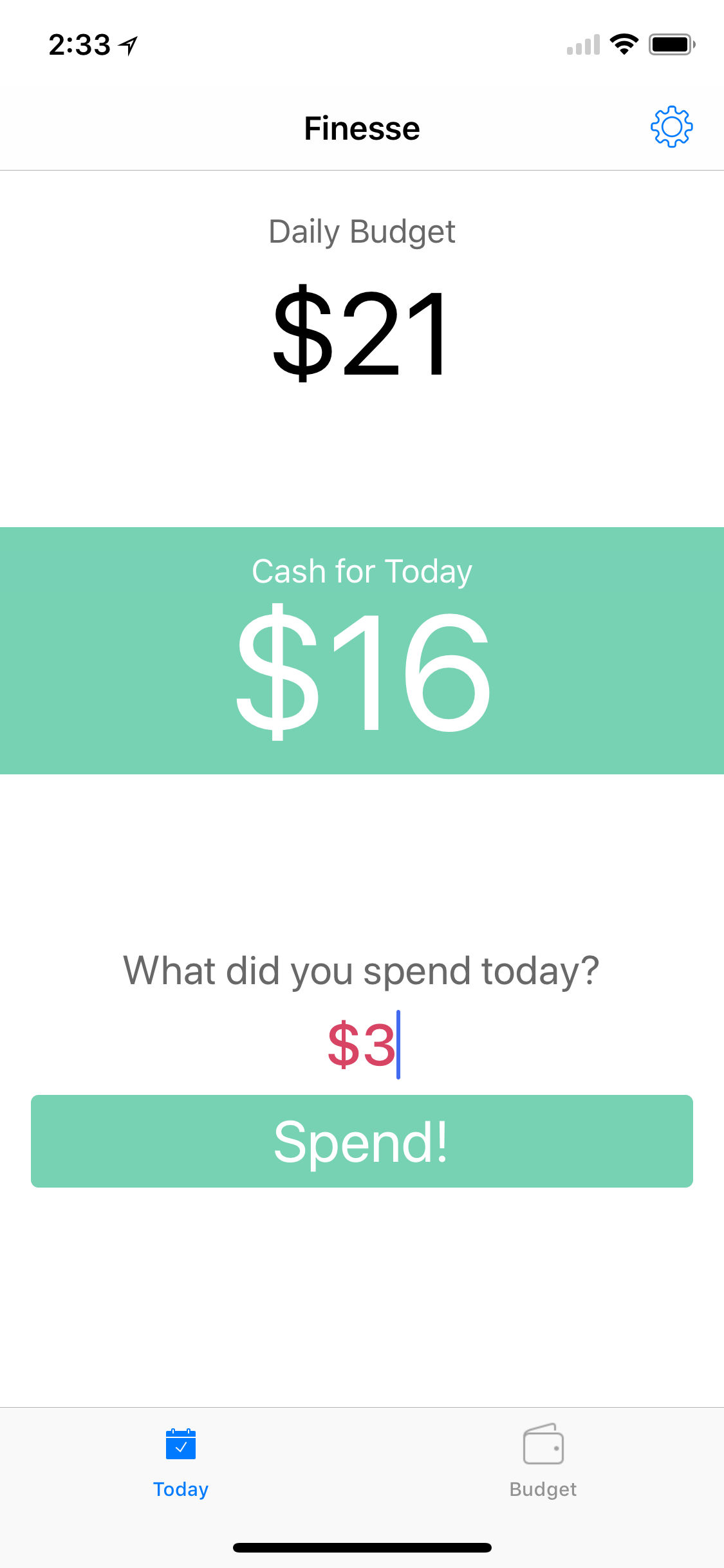 Record your daily spending