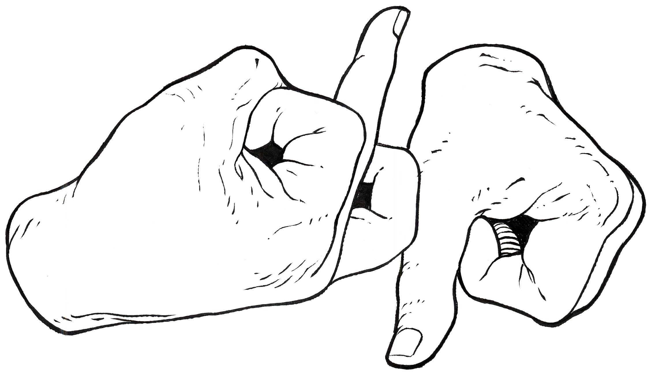 DOP_gang_logo_web.png