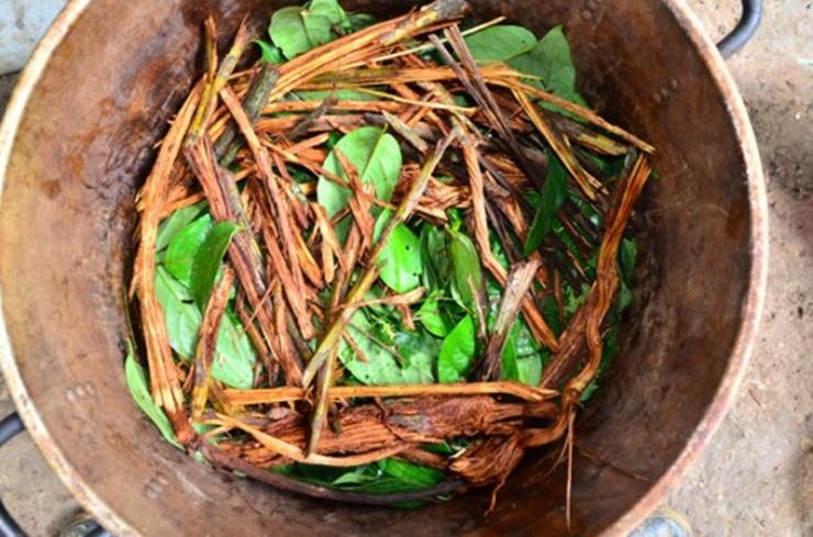 ayahuasca-drogas-psicodélicas.jpg