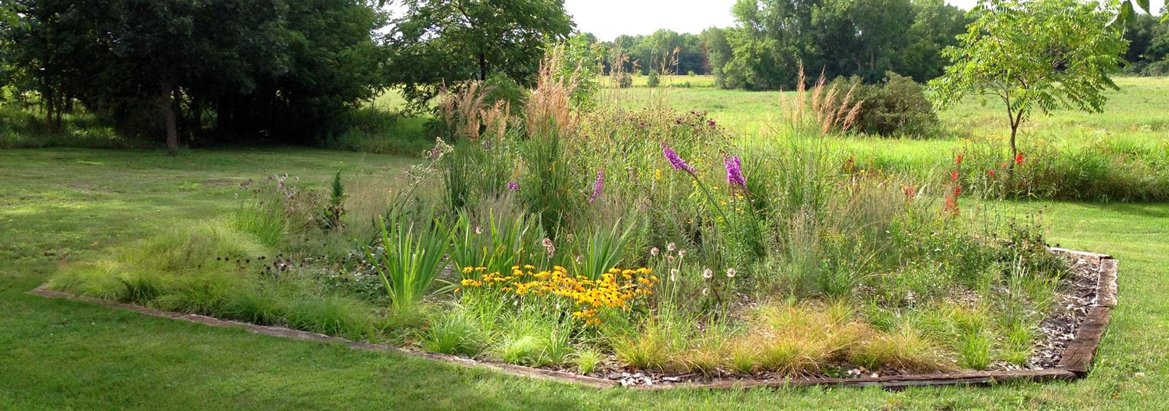Photo: Blazing Star Gardens