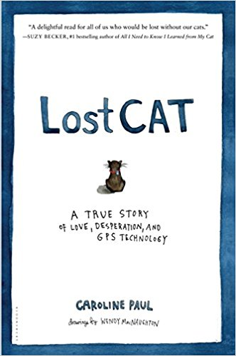 cover-lost-cat.jpg