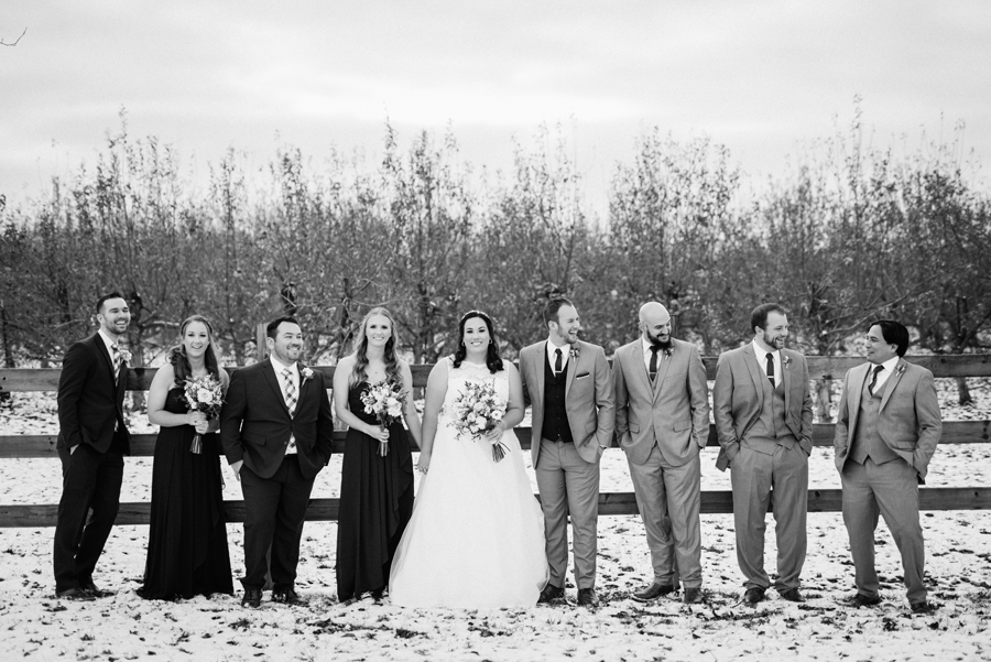 Bridal party portrait in orchard.