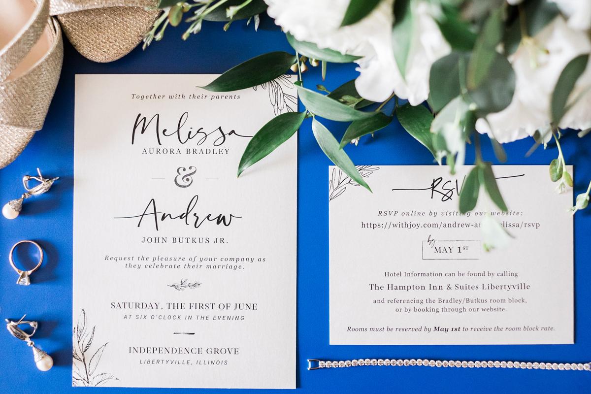 two_birds_photography_jacob_moreland_chicago_westmont_wedding_photographer_Independence_grove_june_summer_03.jpg