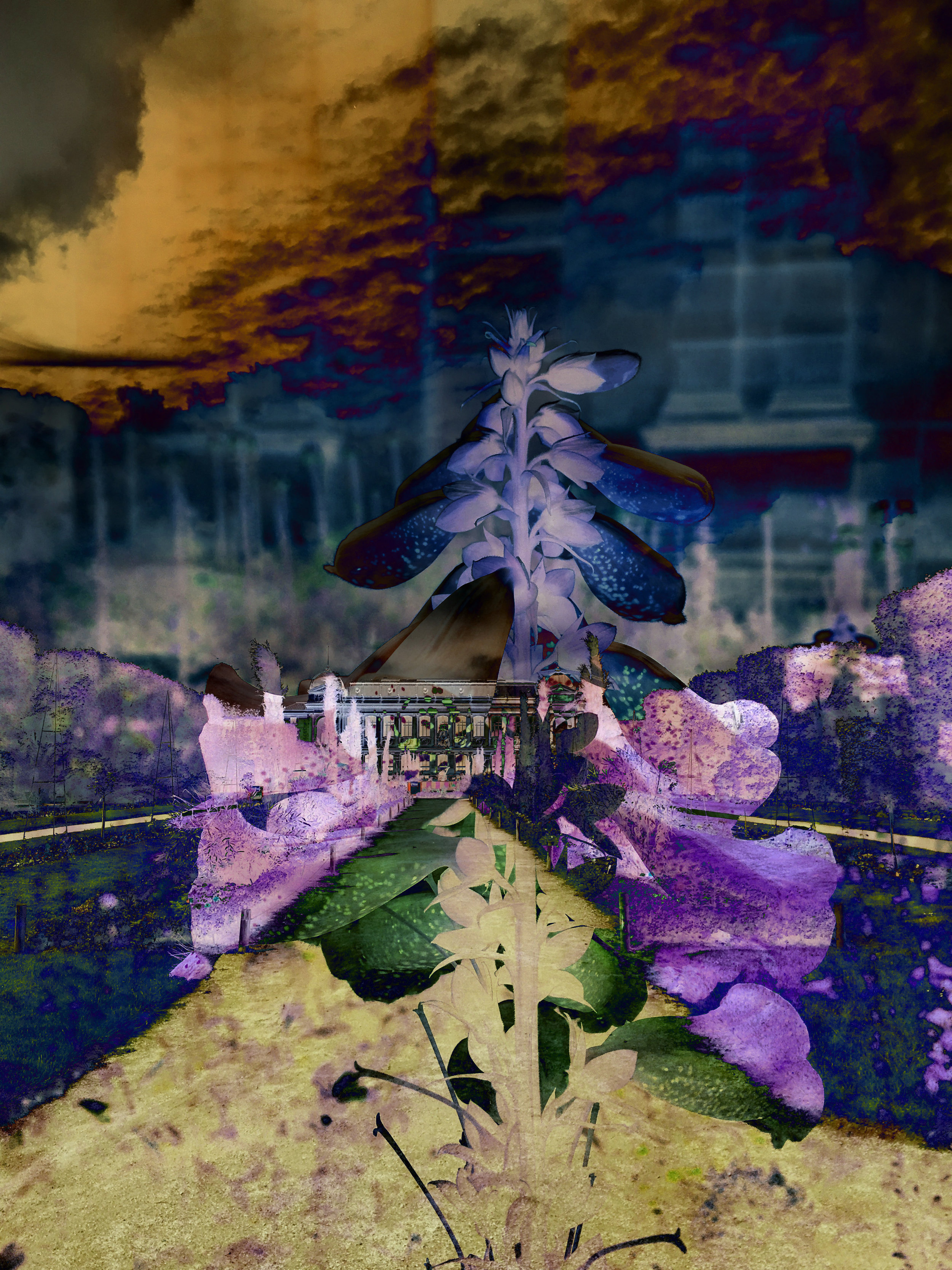 Terrasse Des Feuillants X Jardin des Plantes