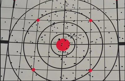 The Bird Shot strategy rarely hits the target