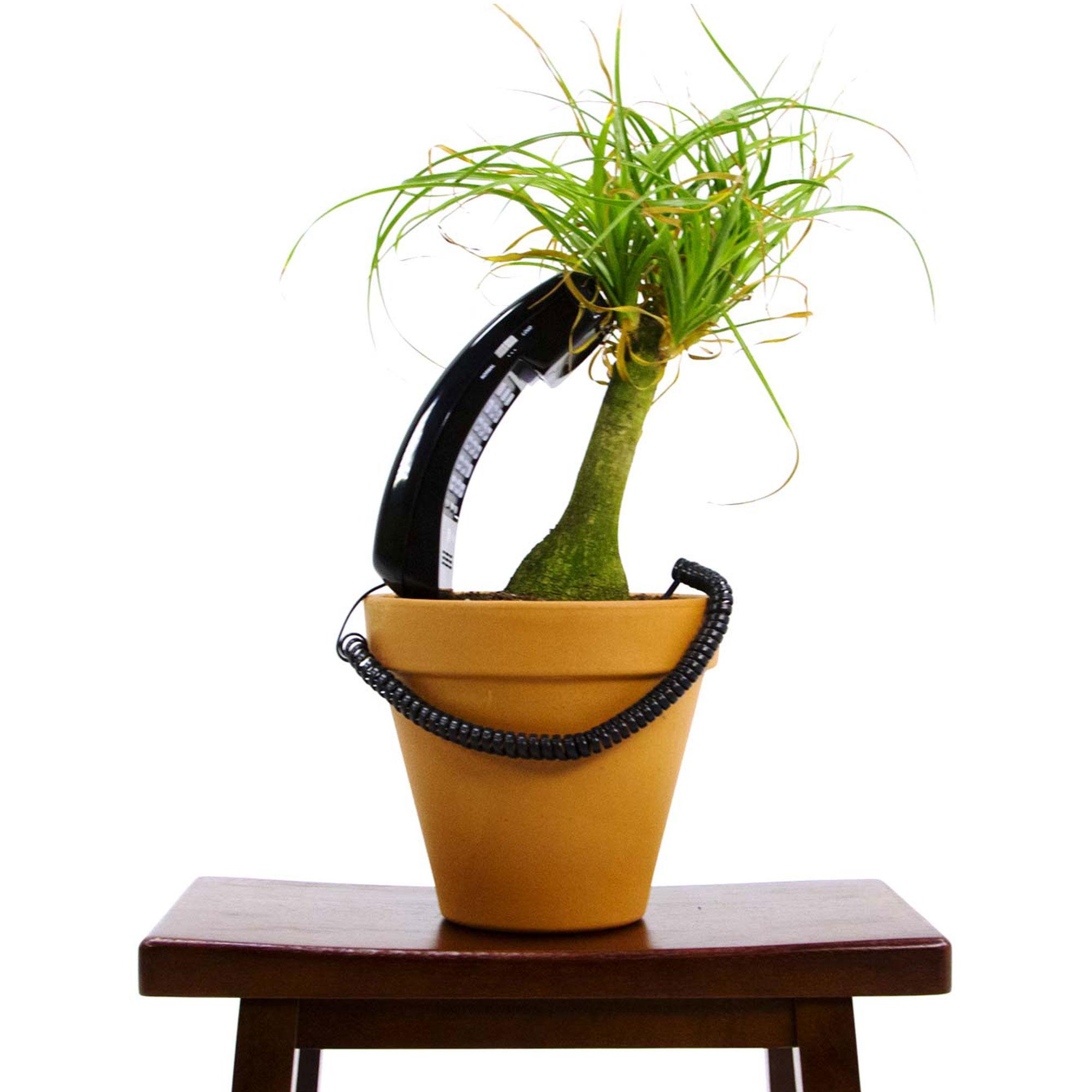 Plant_contact_v1.jpg