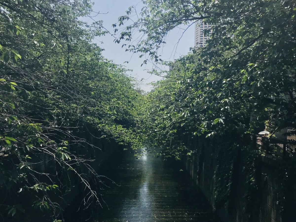 Tokyo_8-1200x900.jpg