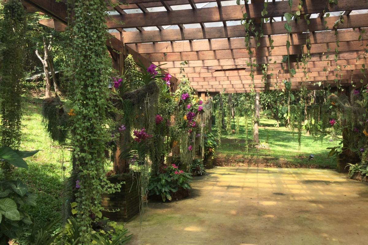 ChiangMai_44-1200x800.jpg