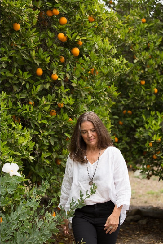 Ojai orange orchards.jpg