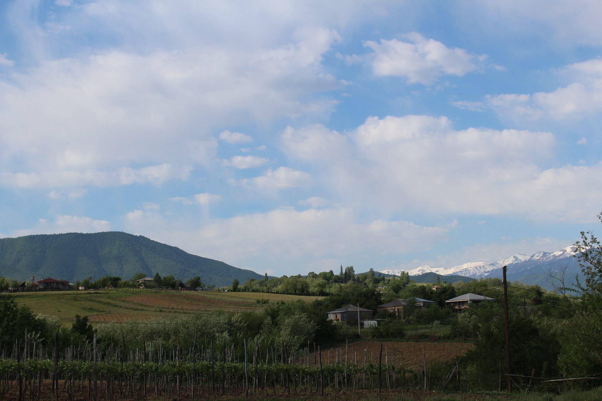 Overlooking the mountains in Georgia near Baia's vineyard, that makes Georgian amber wine also known as orange wine