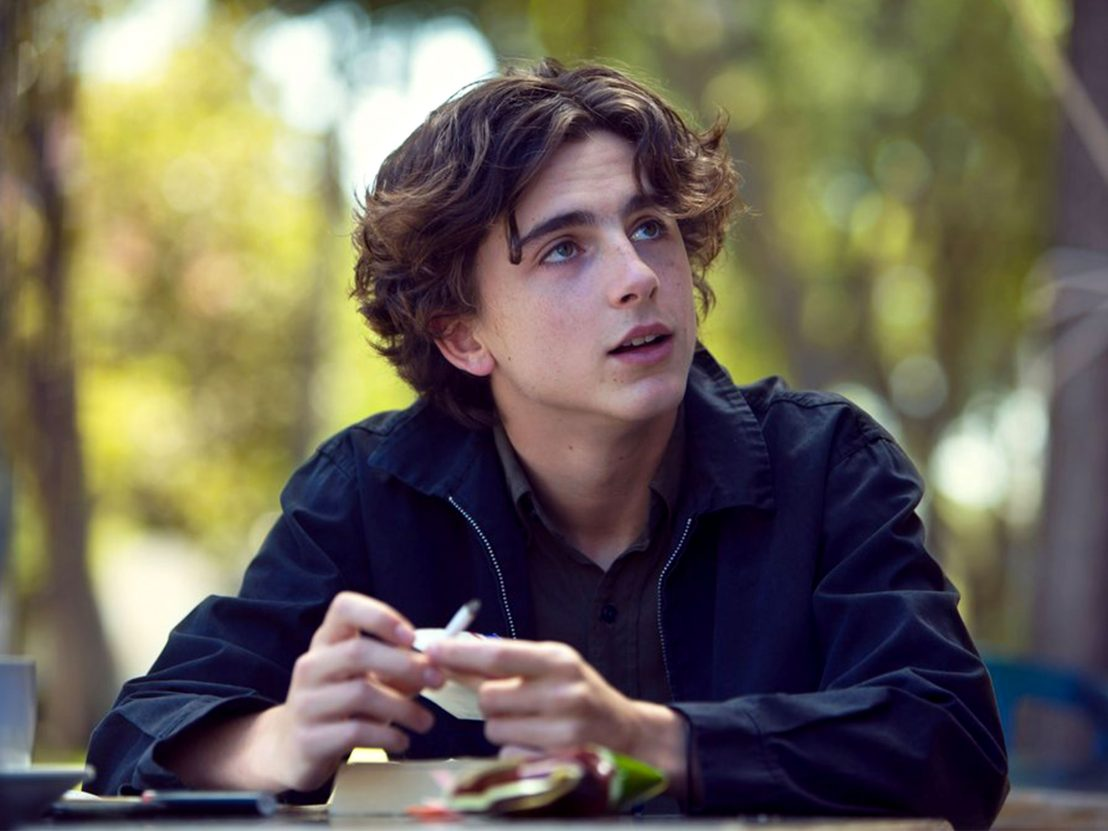 lady-bird-timothee-chalamet-1108x0-c-default.jpg