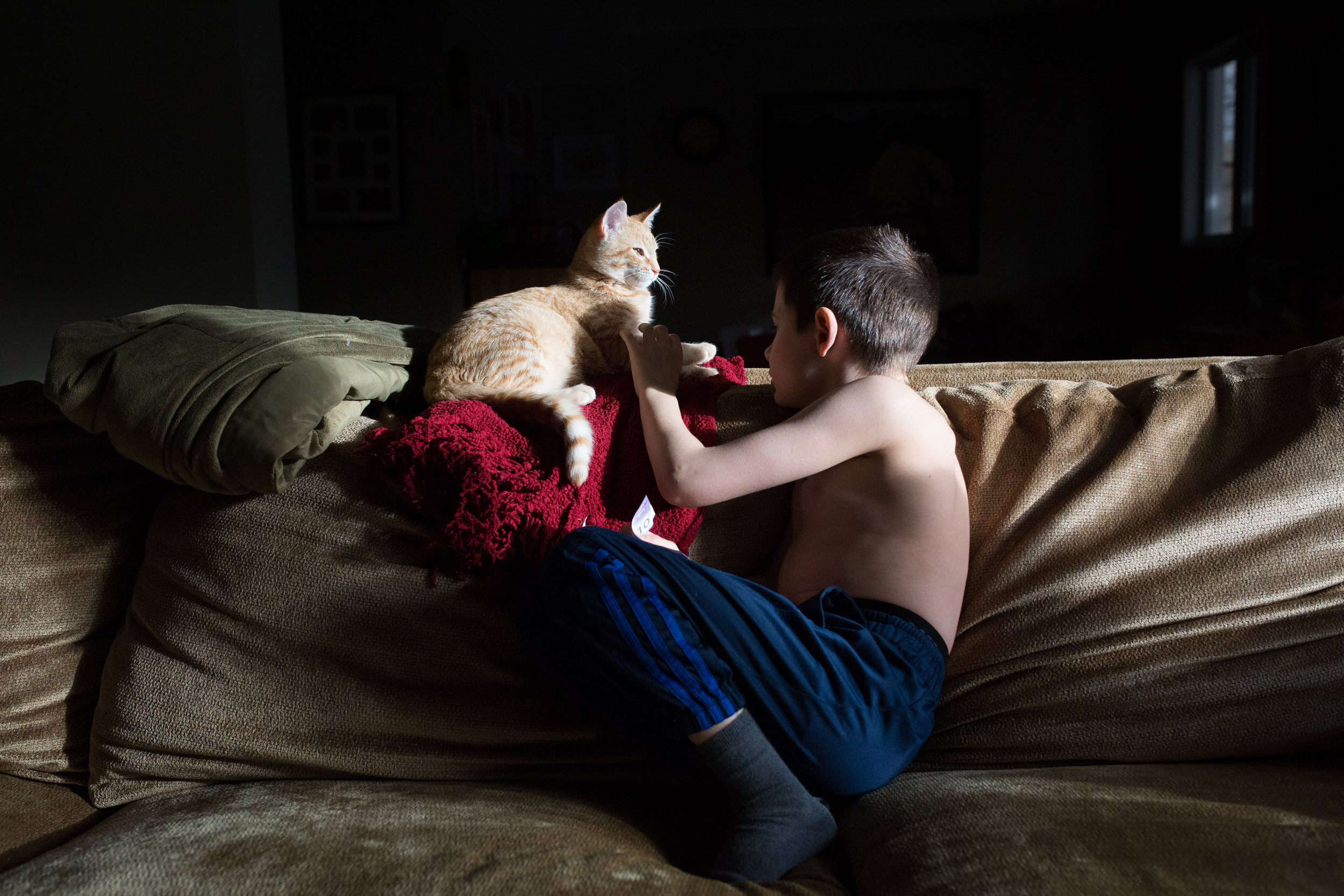 boy plays with his cat