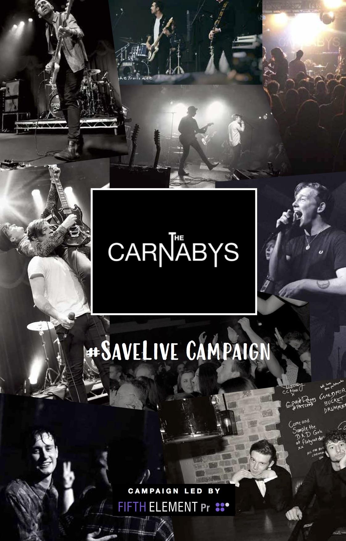 The Carnabys Zine_2.jpg