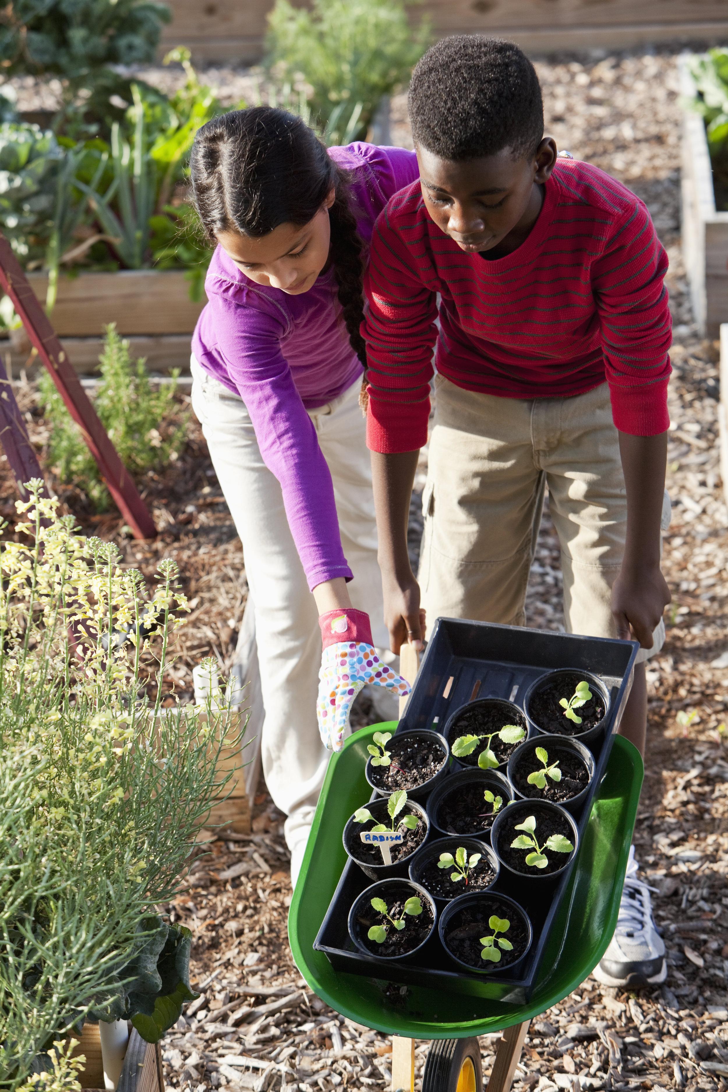 Kids_gardening_RGB.jpg