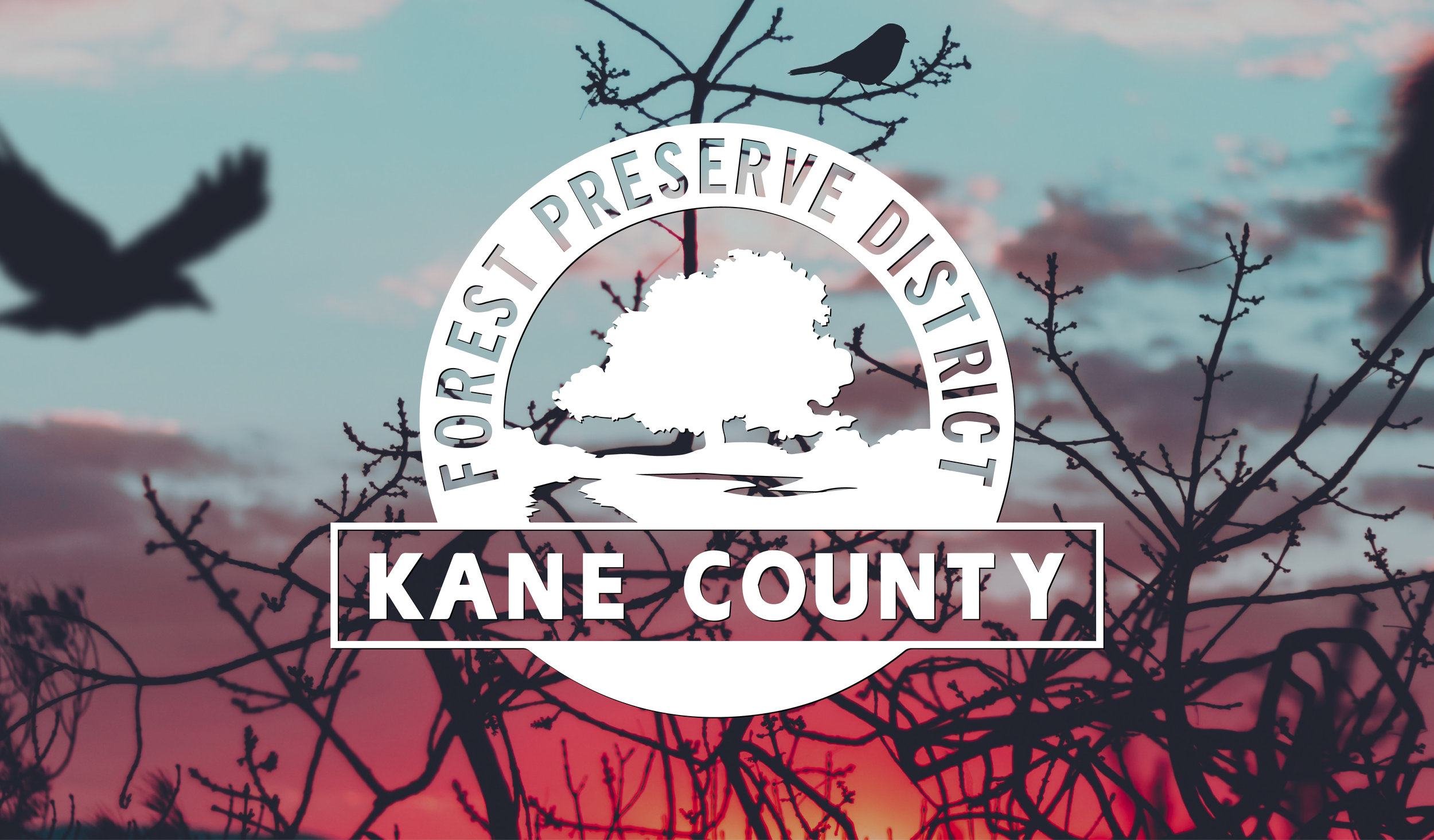 Kane County Forest Preserve Adventure.jpg