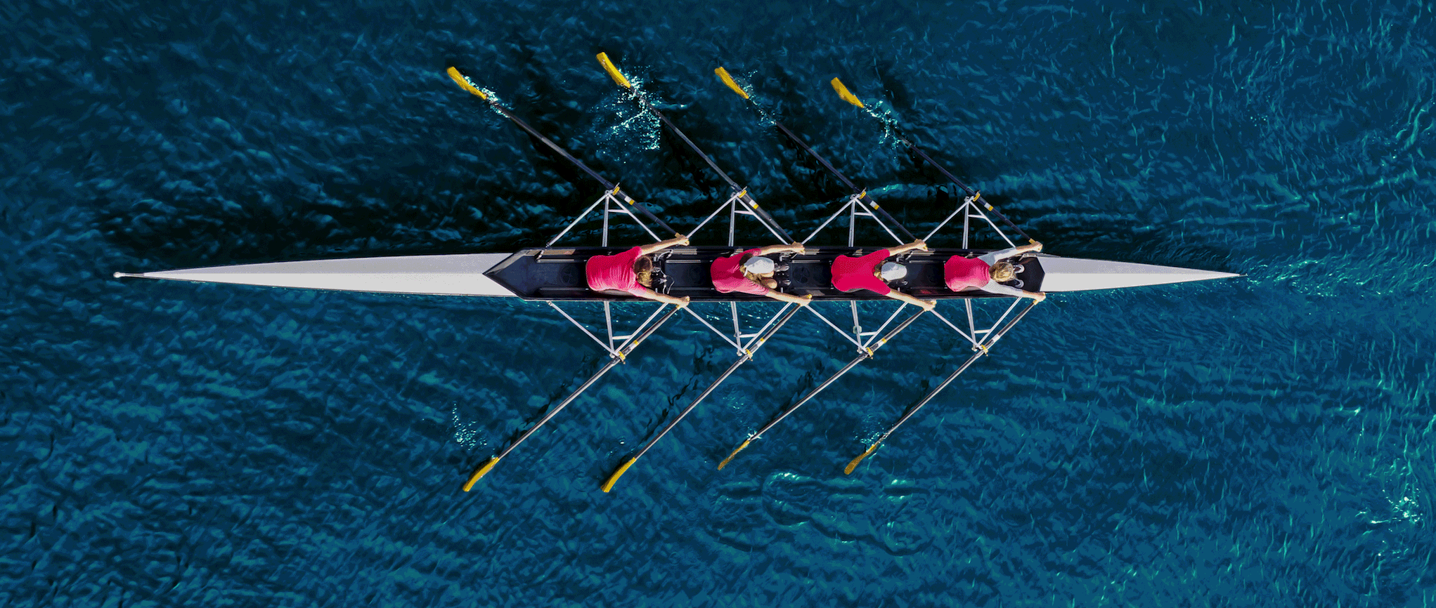 rowers.png