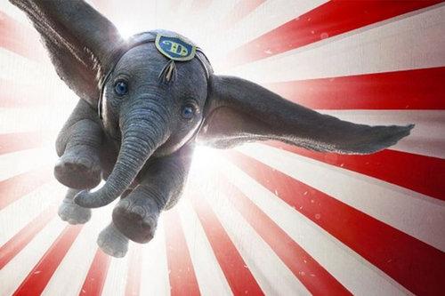 Dumbo+TBC+750x500.jpg