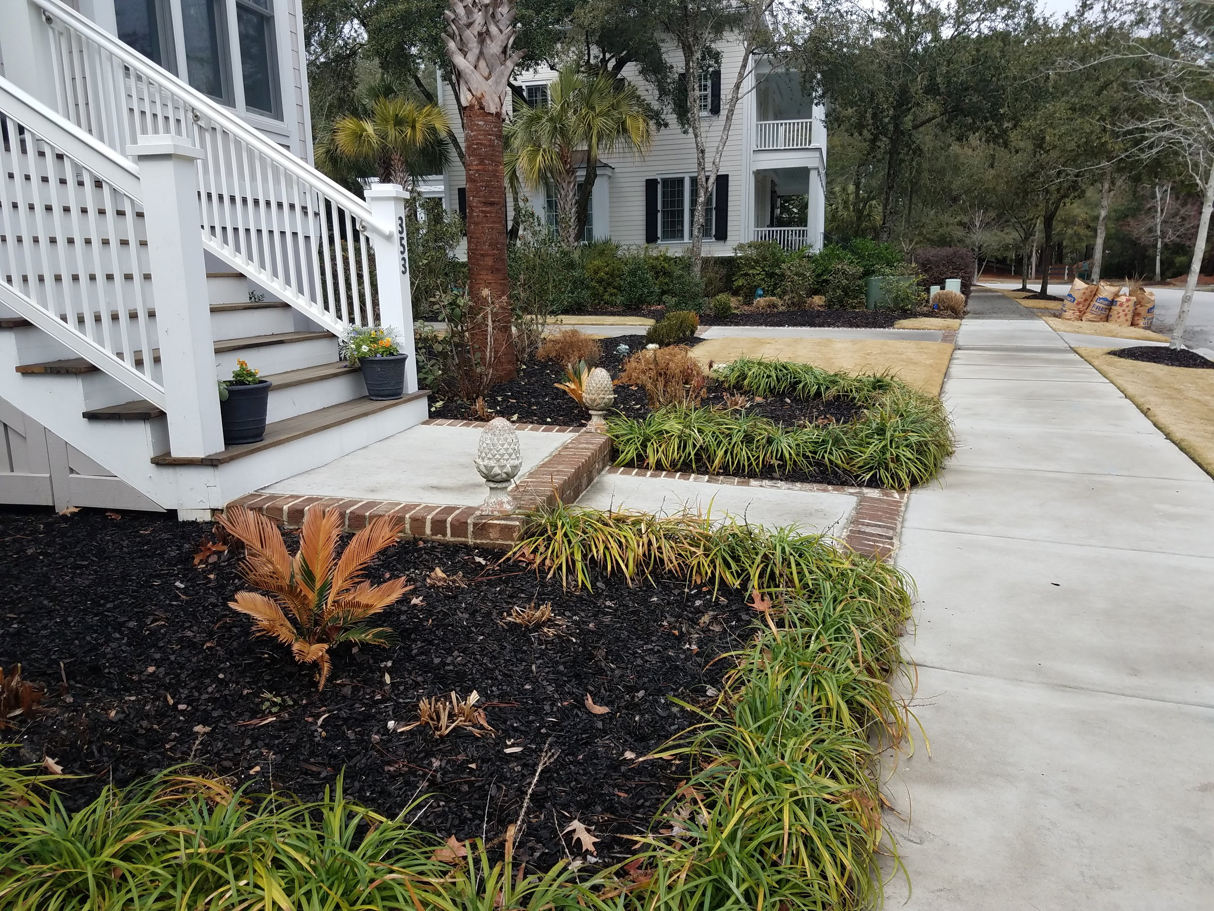 Landscapes Lowcountry Plantmasters