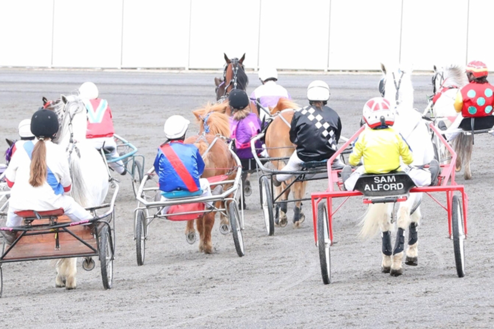 Pony Trots - ID18's opening night will also unite the very best young talent Victoria has to offer in the Pony Trots Inter Dominion. With the Inter Dominion not being held in Victoria since 2008 it means that none of our future stars have before seen a stage as big as this.It will be all on the line with ponies and drivers all vying for the six spots up for grabs on finals night. Ponies will be split up in to size categories with two ponies from each of the categories progressing through to the big dance to battle for the biggest prize of the season on four little legs.
