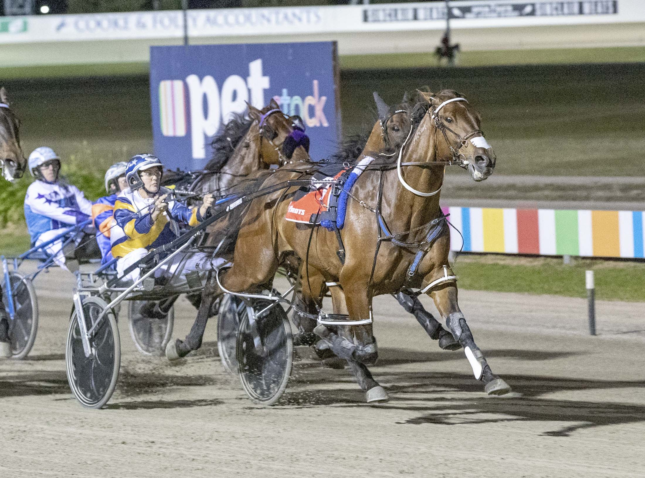 Cruz Bromac, TAB Inter Dominion Pacing Championship 2nd Round Qualifying Heat 3 Winner