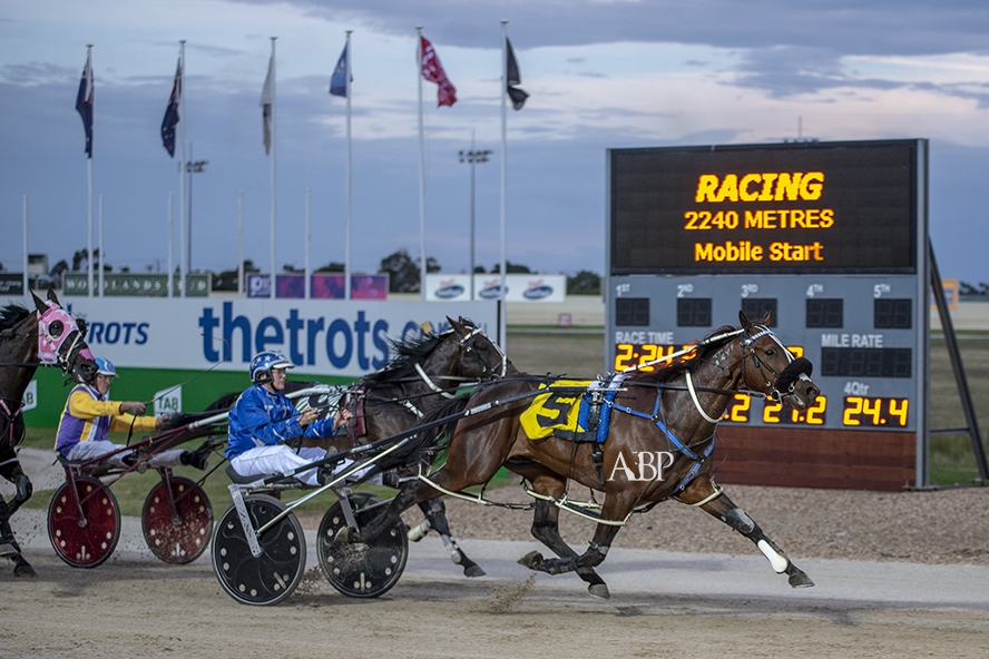 Spankem takes out his TAB ID18 first-round pacing heat for Natalie Rasmussen, driving for the champion New Zealand-based Mark Purdon/Rasmussen stable.