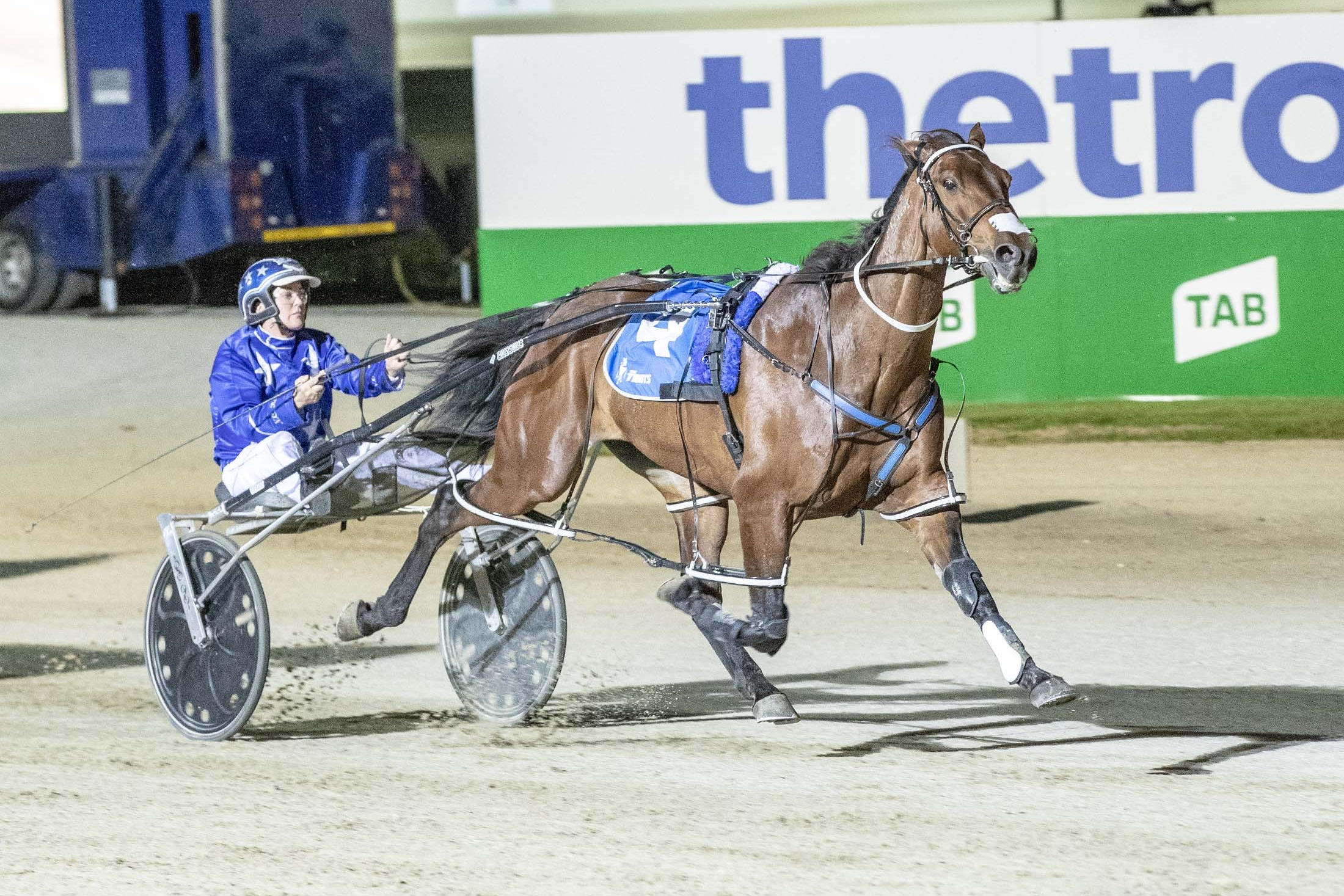 Natalie Rasmussen guides Cruz Bromac home in the first round of the TAB ID18 pacing heats at Tabcorp Park Melton.