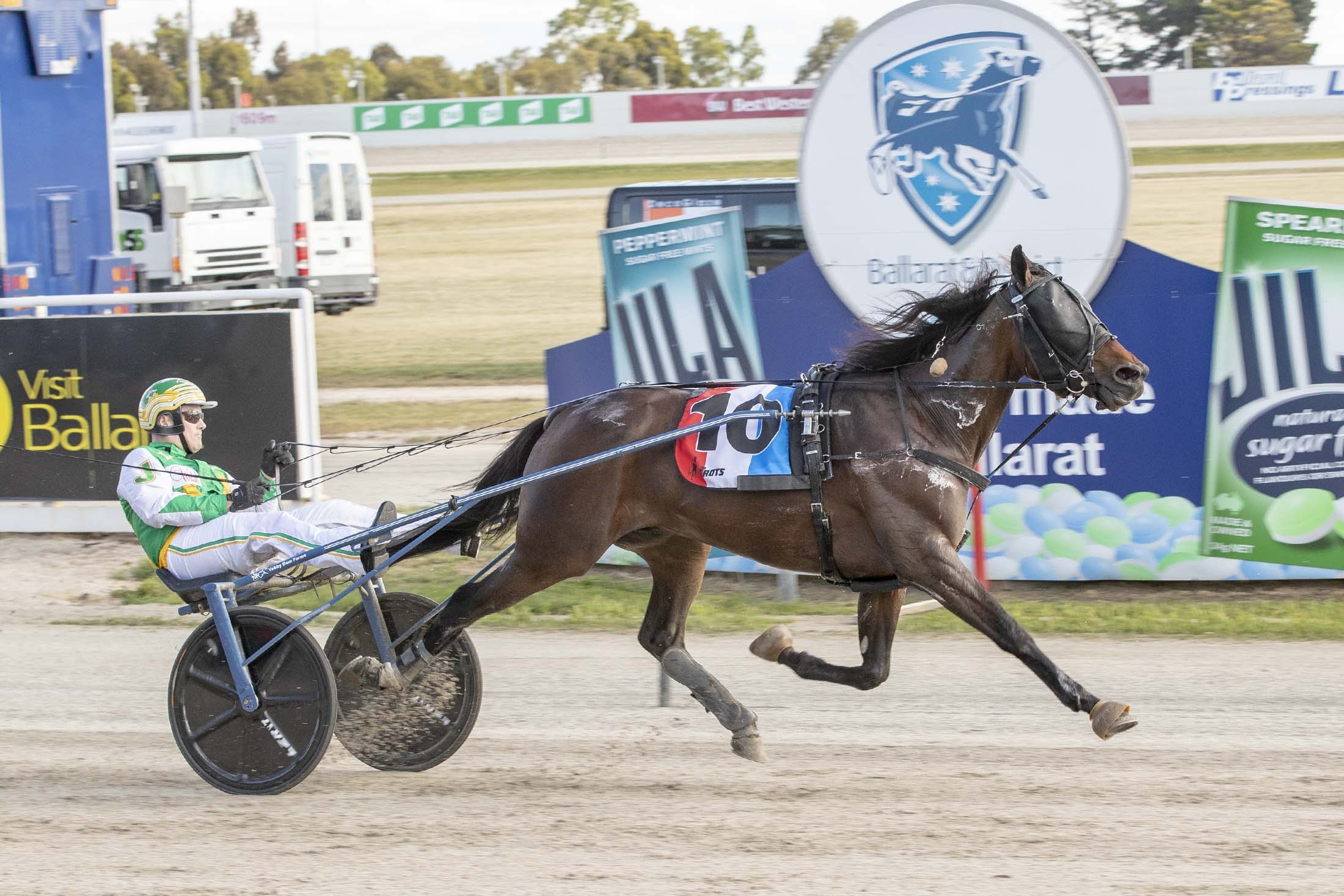 Majestic Player, Decoglaze Glass Splashbacks Trot Final Winner