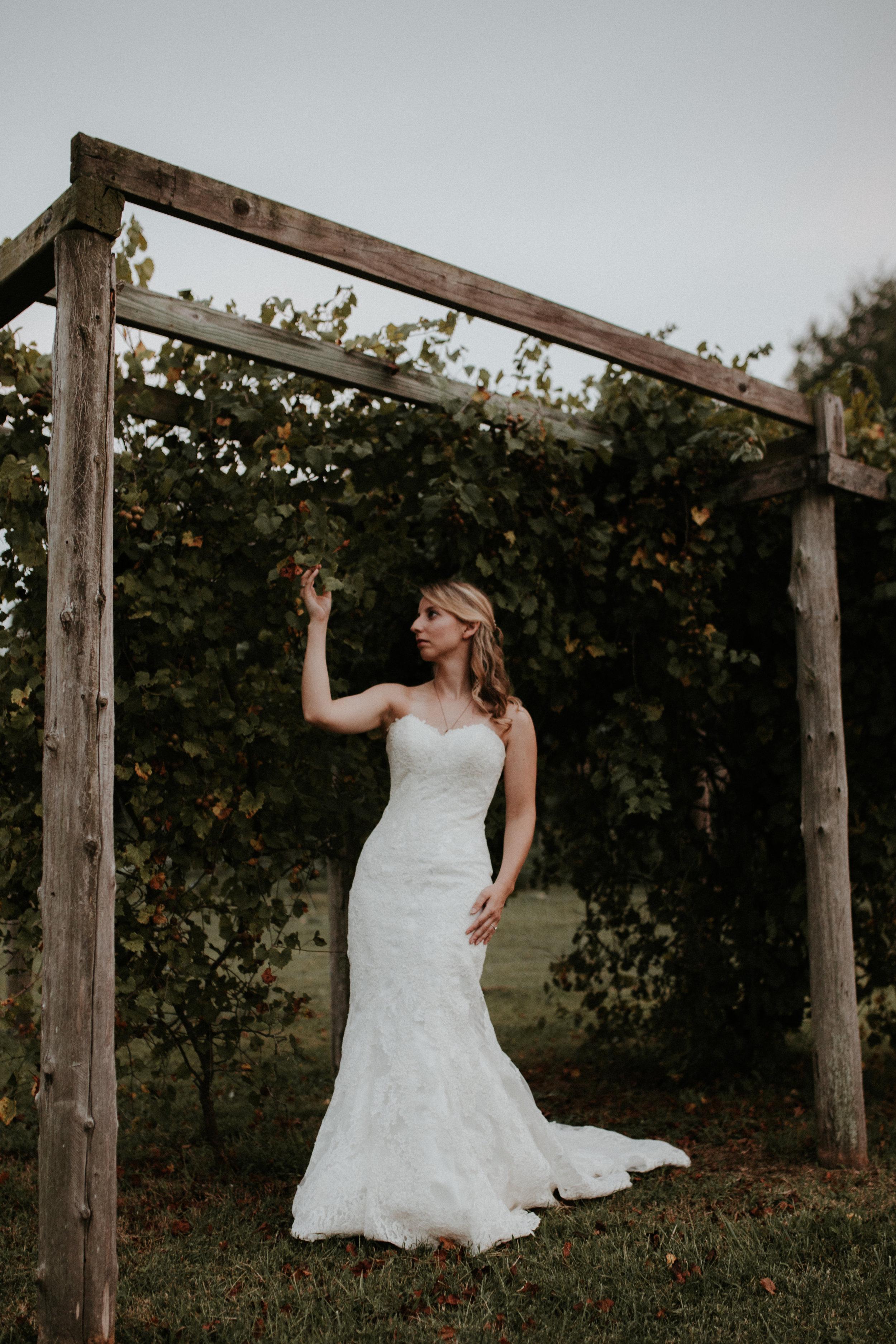 charlotte-wedding-photographer-daniel-stowe-2661.jpg