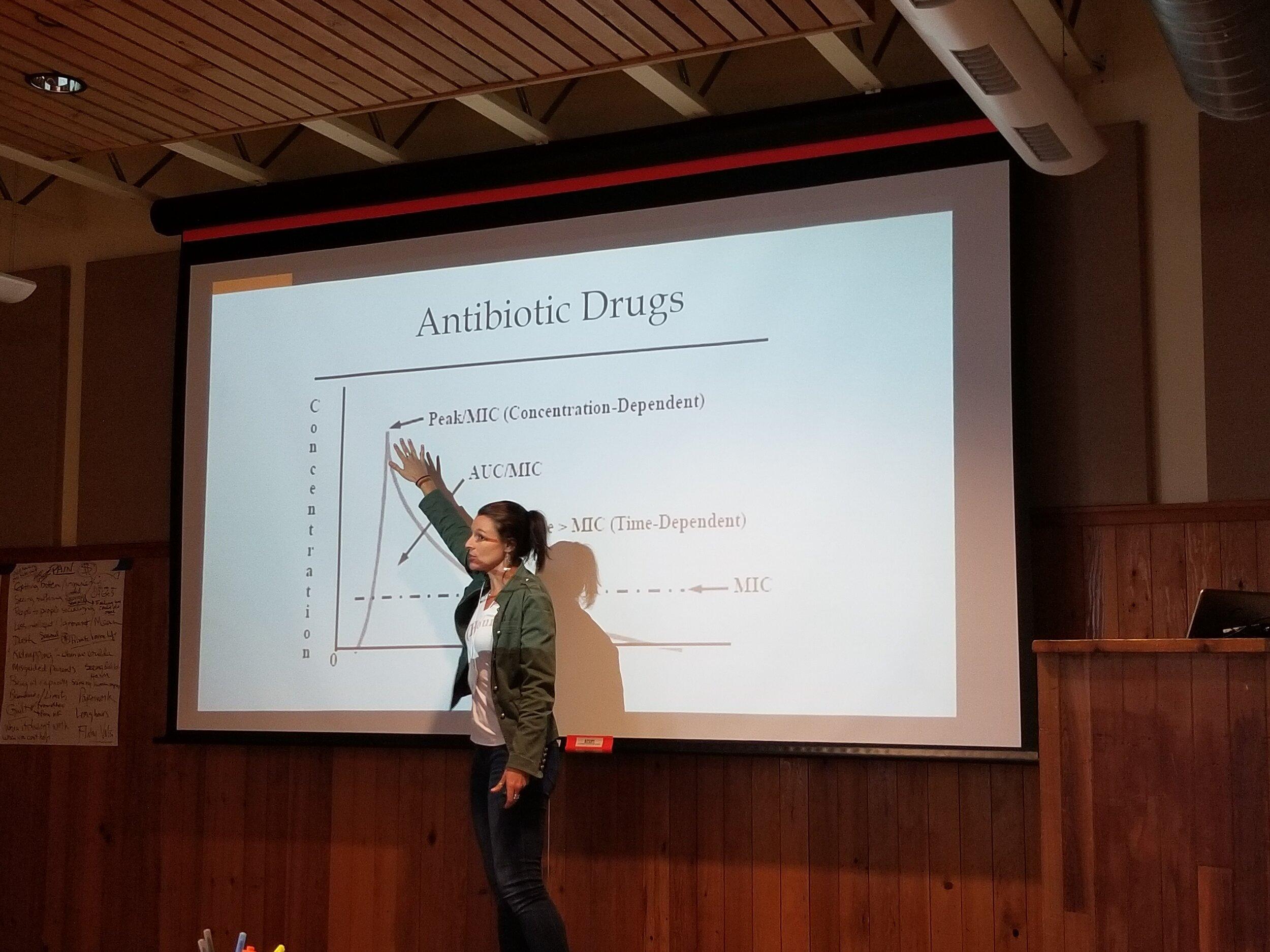 Dr. Nicki Rosenhagen discusses antibiotic use in wildlife.