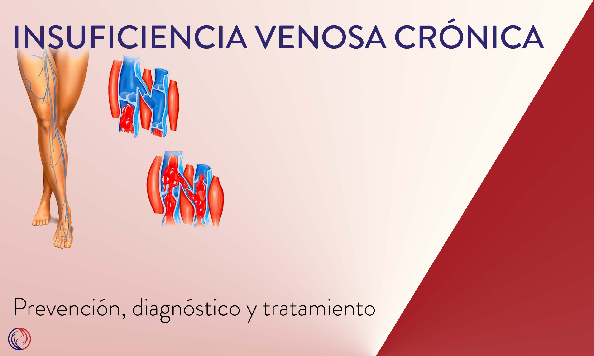 IVC - Dra Stefany Gonzalez De Leo.jpg