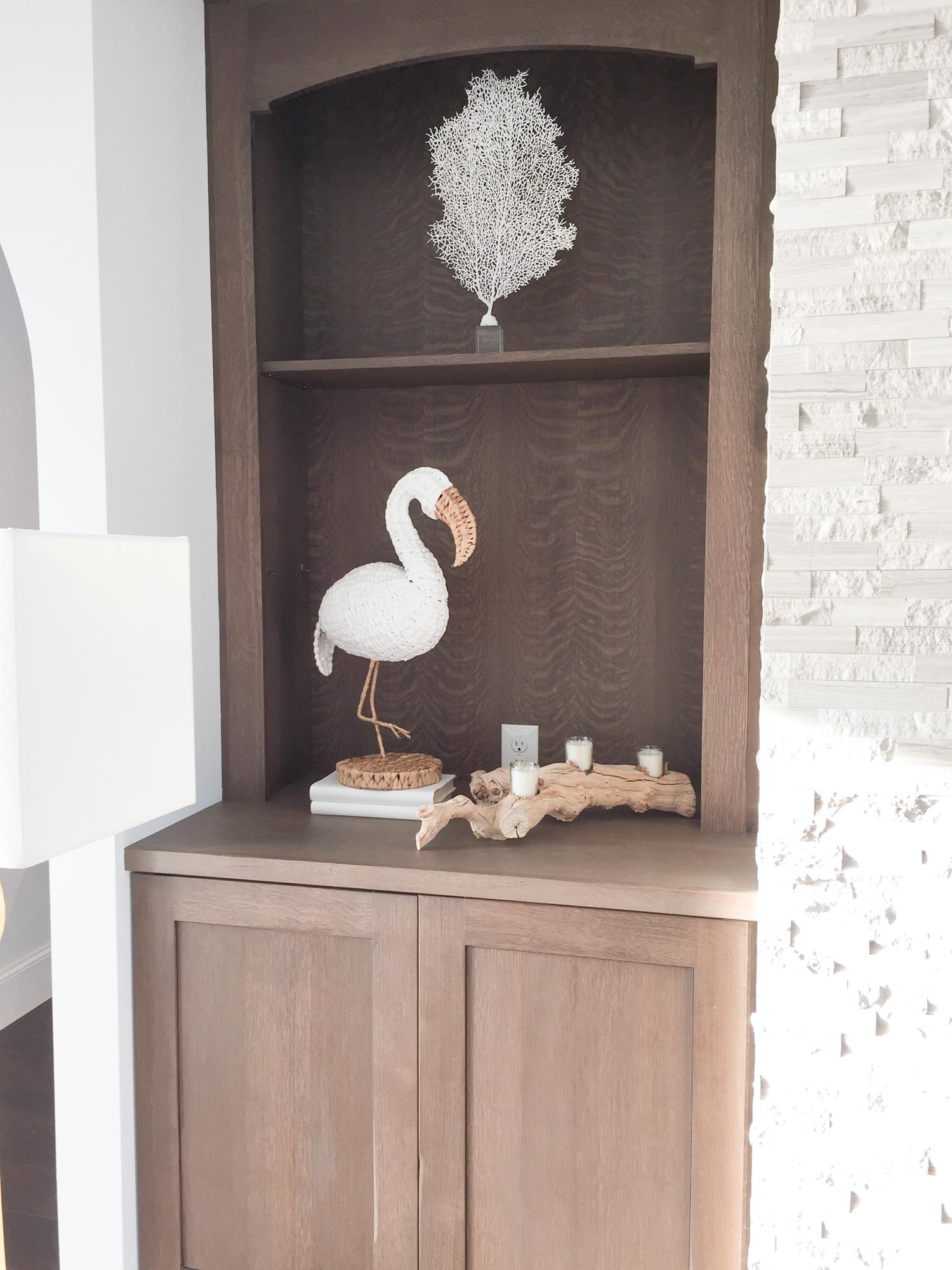 Bookcase with coral on acrylic