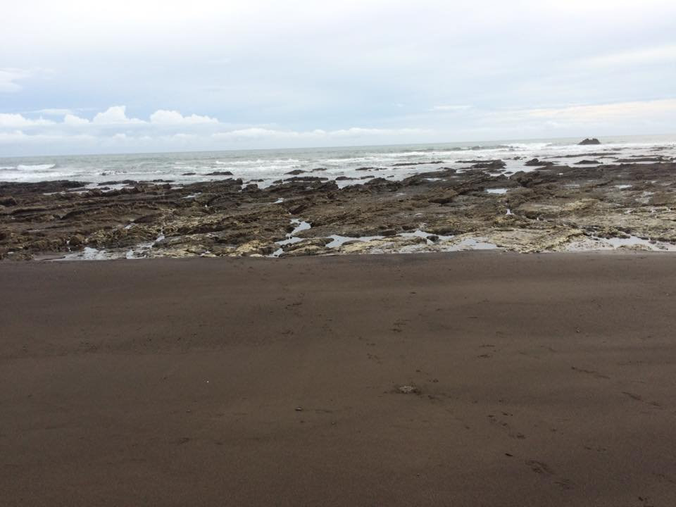 Off the Pacific coast of Costa Rica, the low tide exposes rocks covered in barnacles, seaweed, and creatures of the intertidal zone. A land mass is visible in the distance, rising from the ocean.
