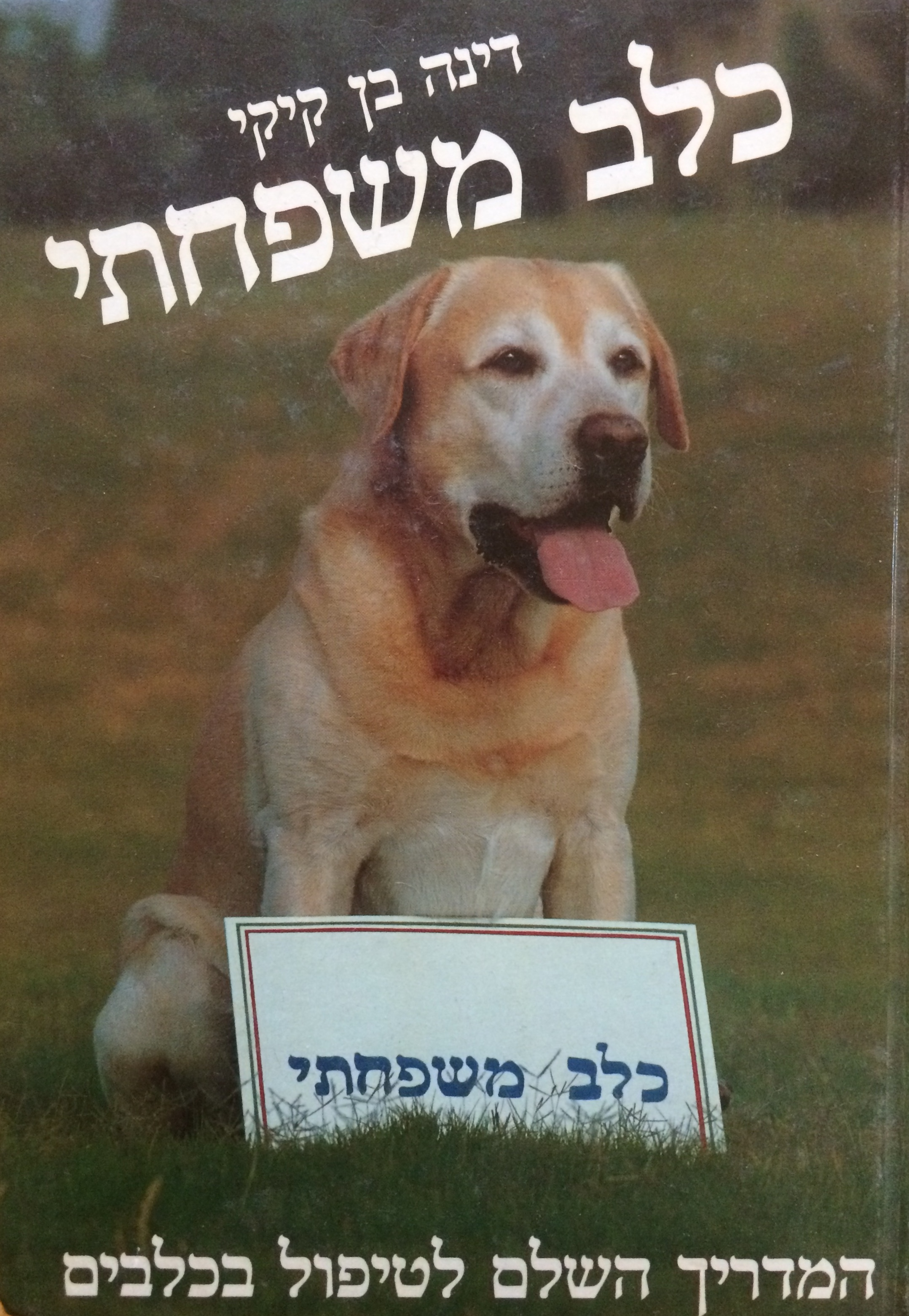 Pictured: the cover of my first published book, with glorious Banner as cover dog.
