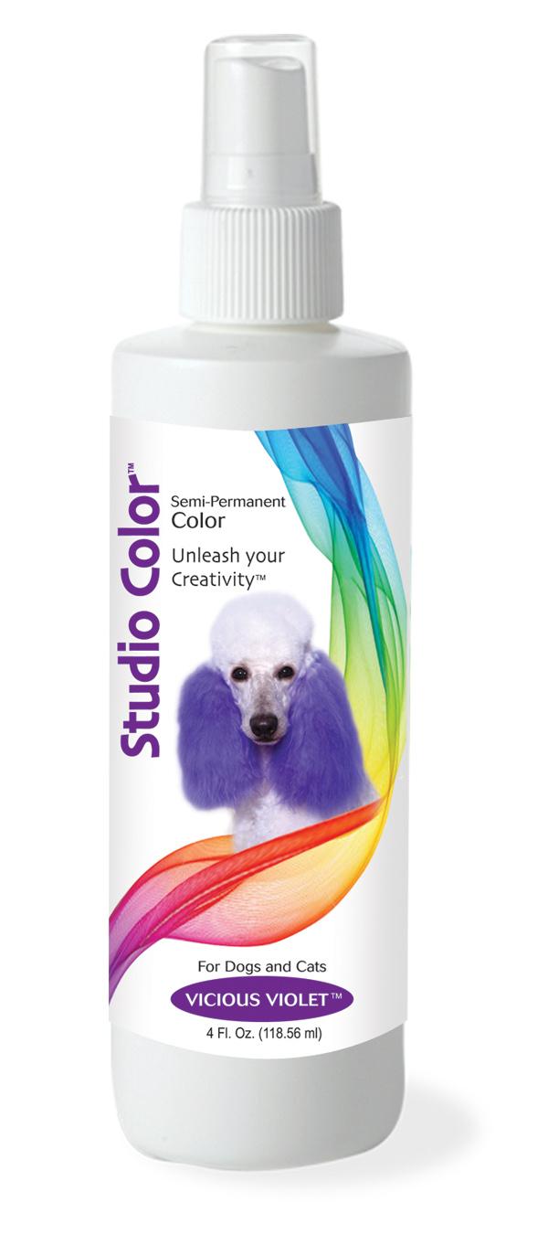 StudioColor Violet.jpg