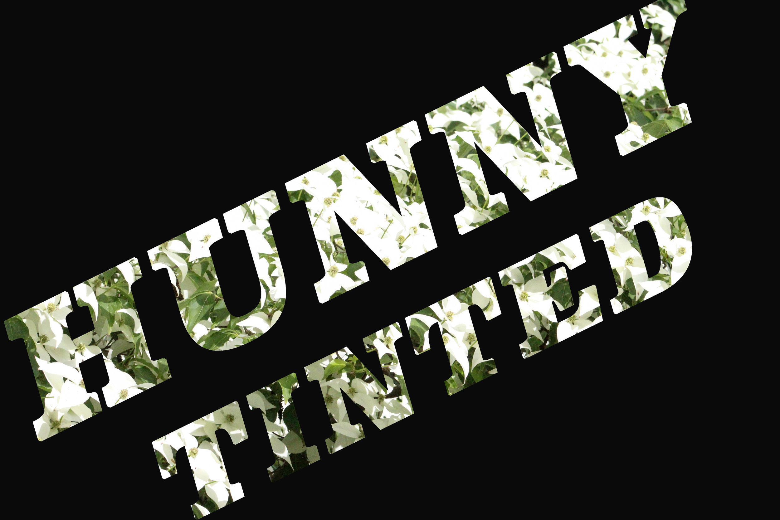 HunnyTintedSpring2.jpg