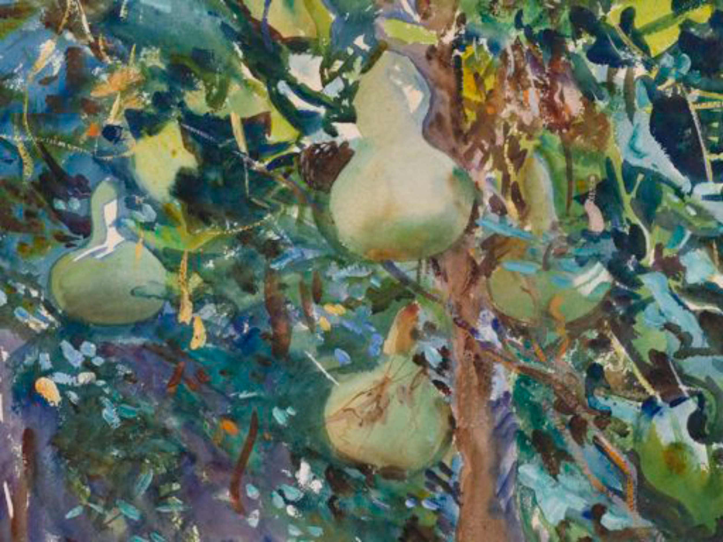 Sargent-gourds low res.jpg