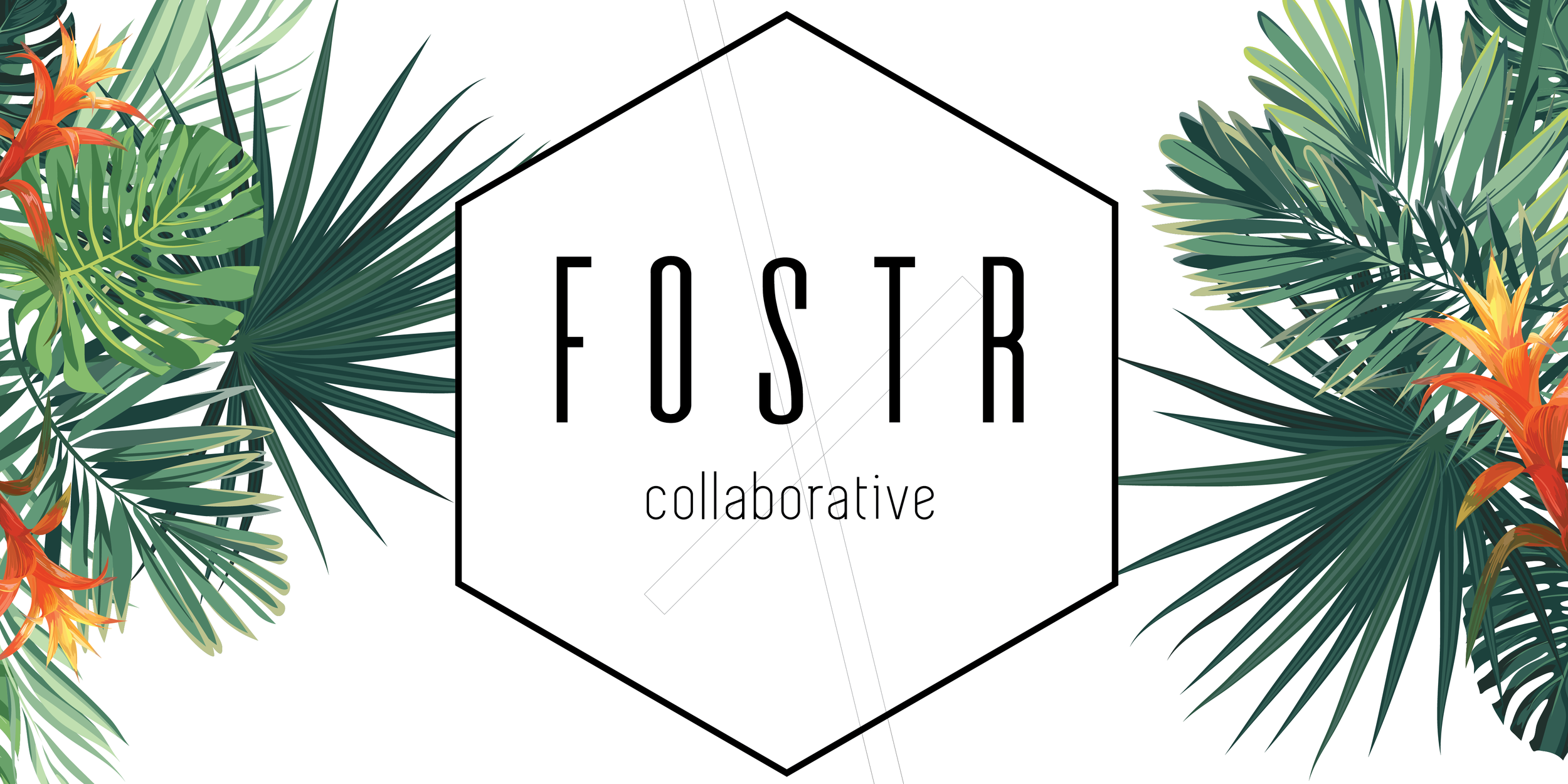 fostr_workshop_graphics-03.png