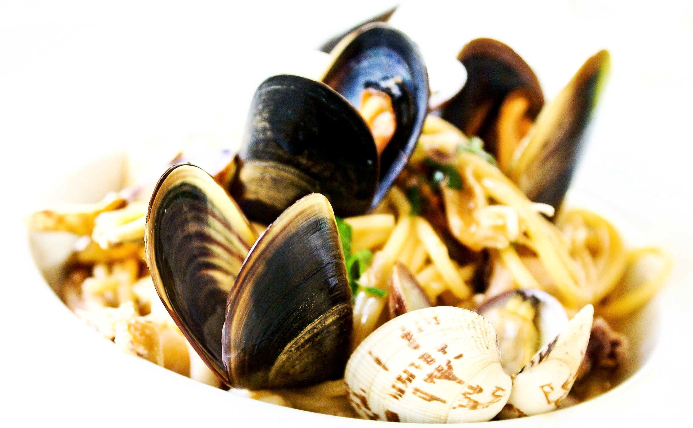 bivalve-clam-cooking-921374.jpg