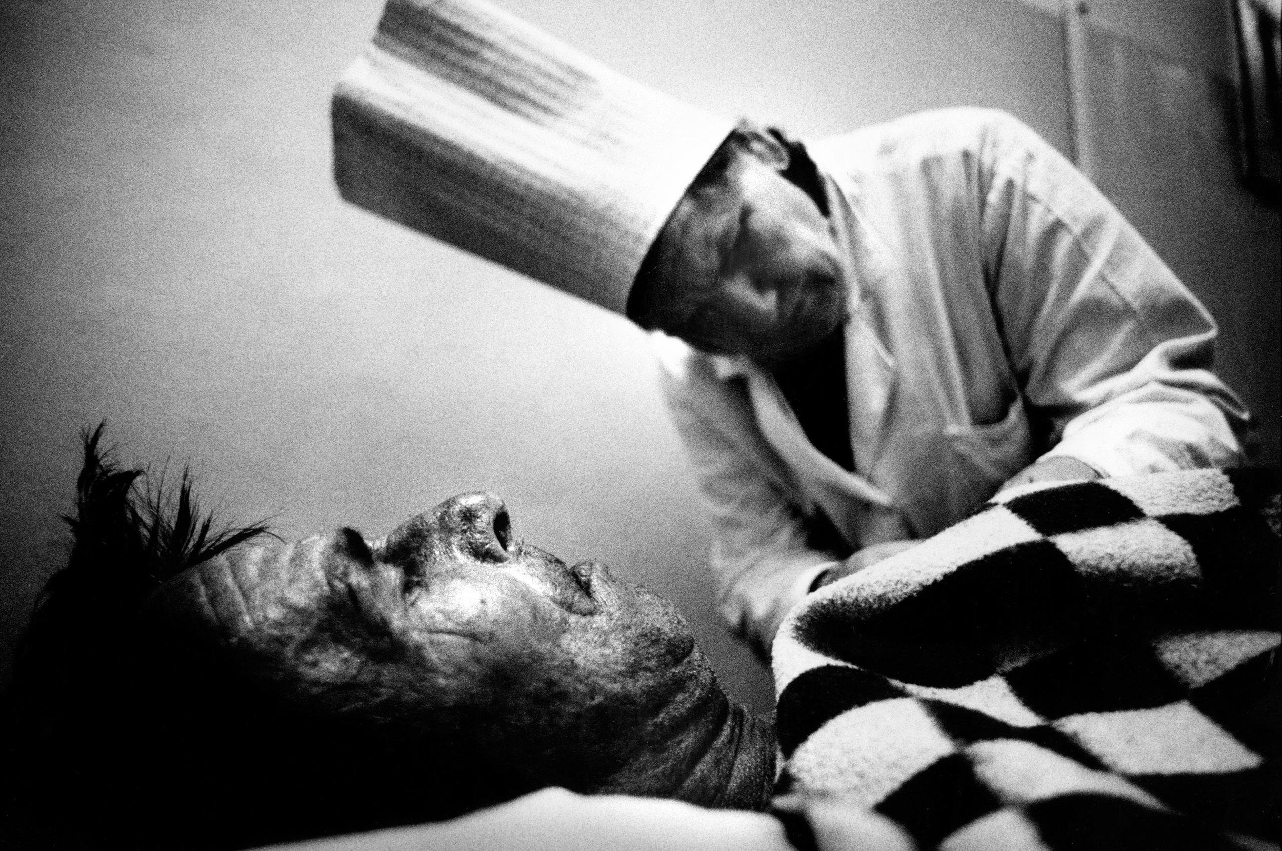 tuberculosis-2.jpg