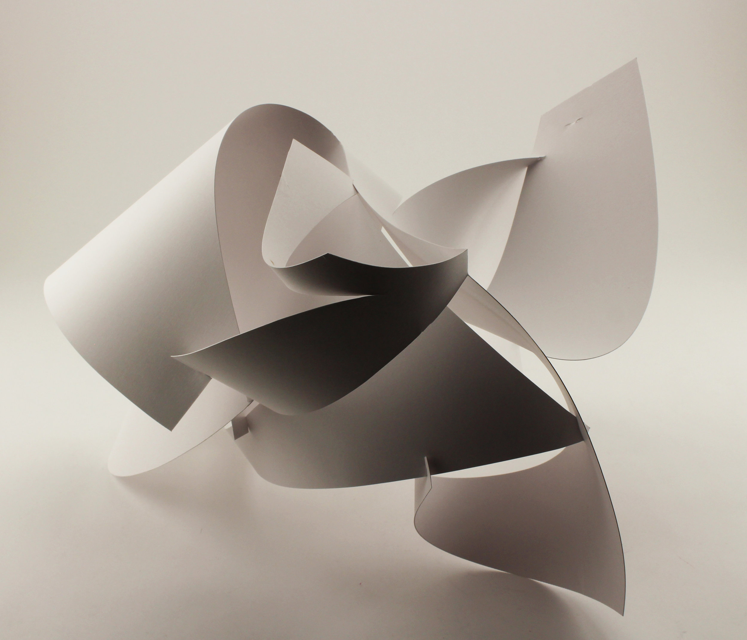 coquille, 2017  folded paper