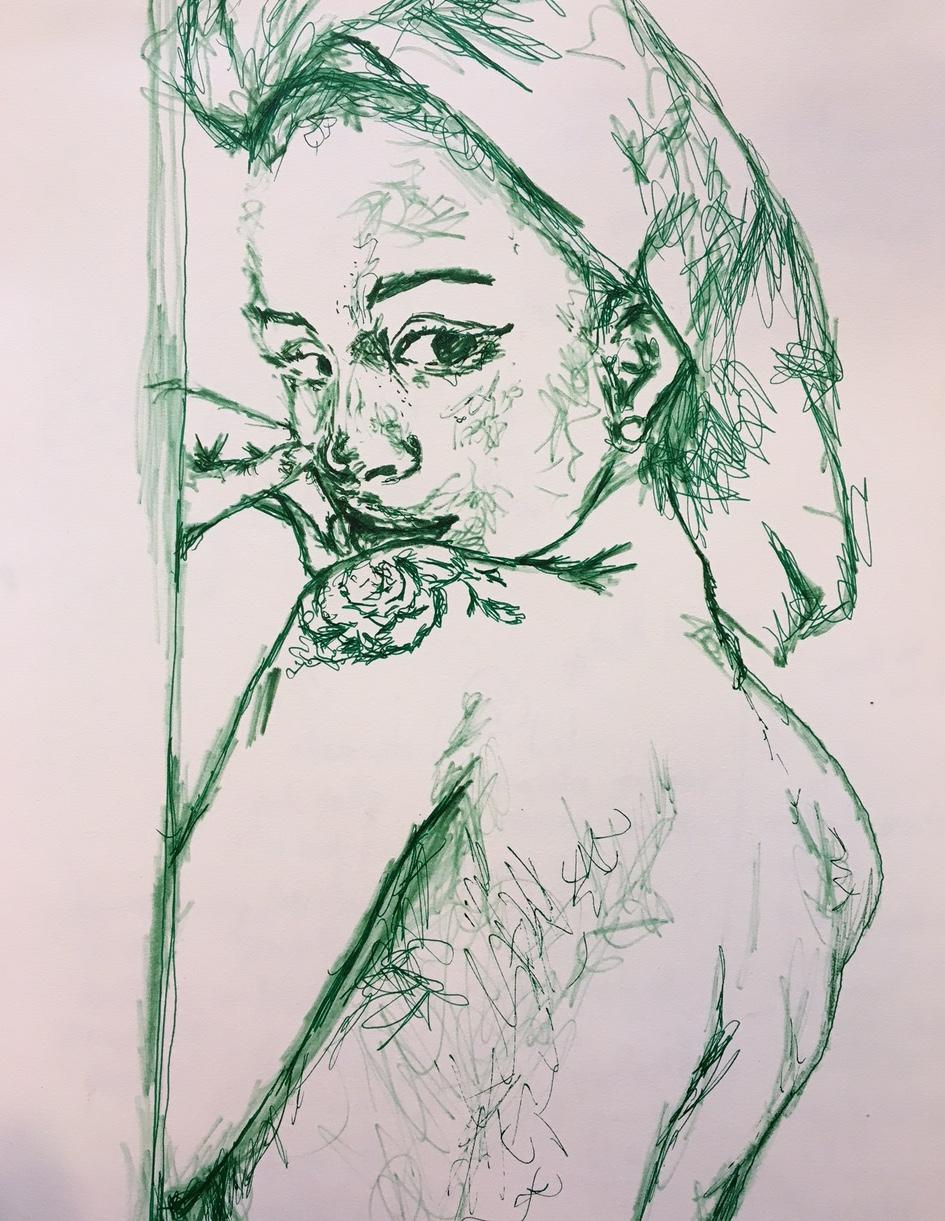 coy, 2017  pen on paper