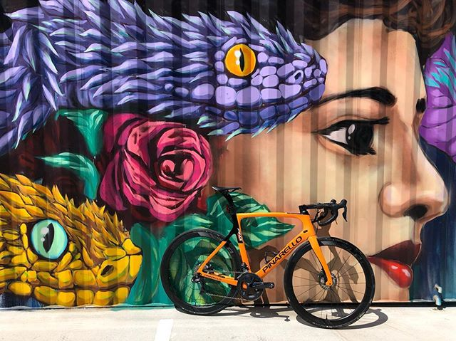Easy Easter spin with a stop to admire @uloang 'a street art in the Fort Worth Design District. . @cadencecyclerykeller @velocafetx @pinarello_us @pinarello_official #cycling #bikes #texaswind