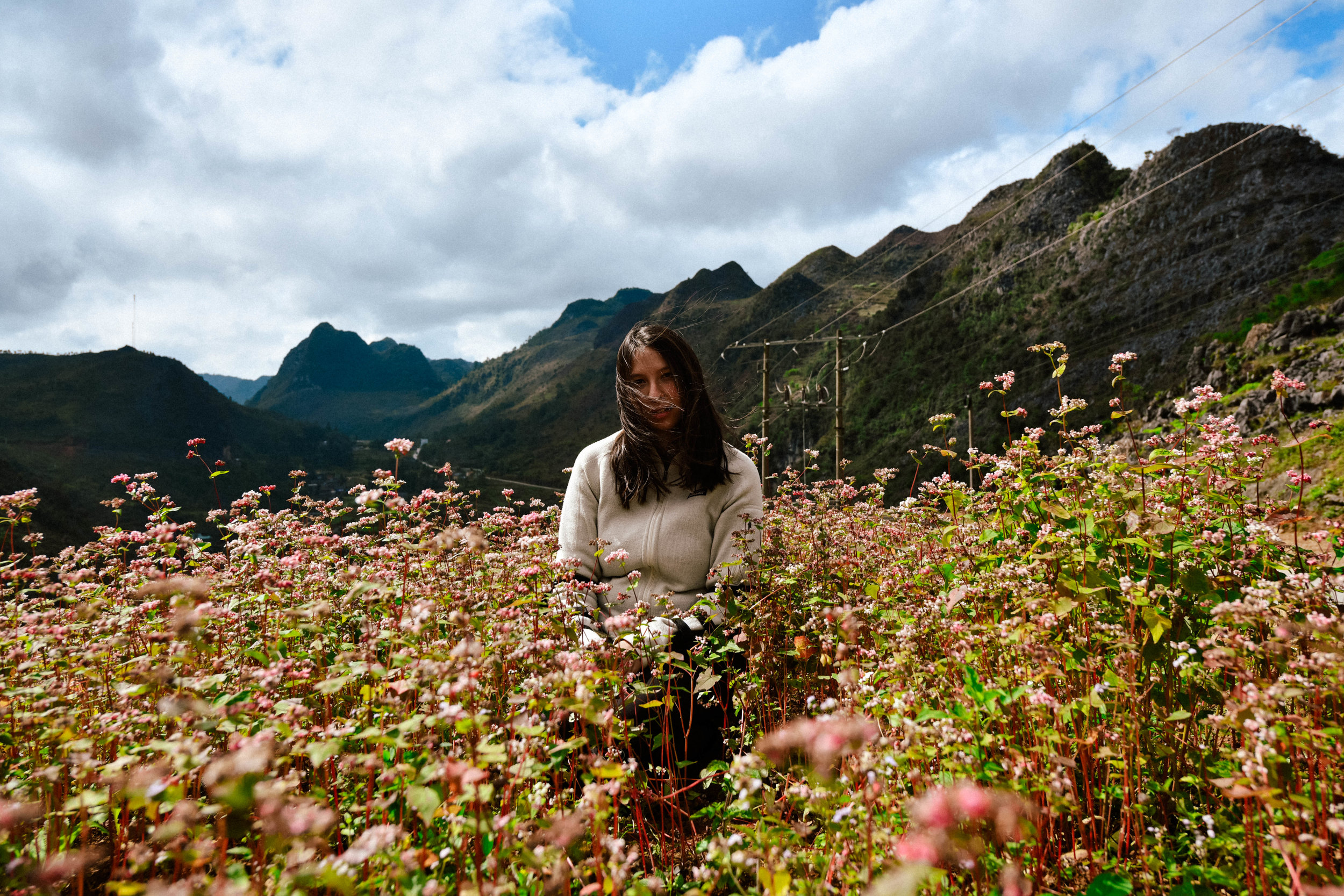 girl sitting in a field of pink flowers