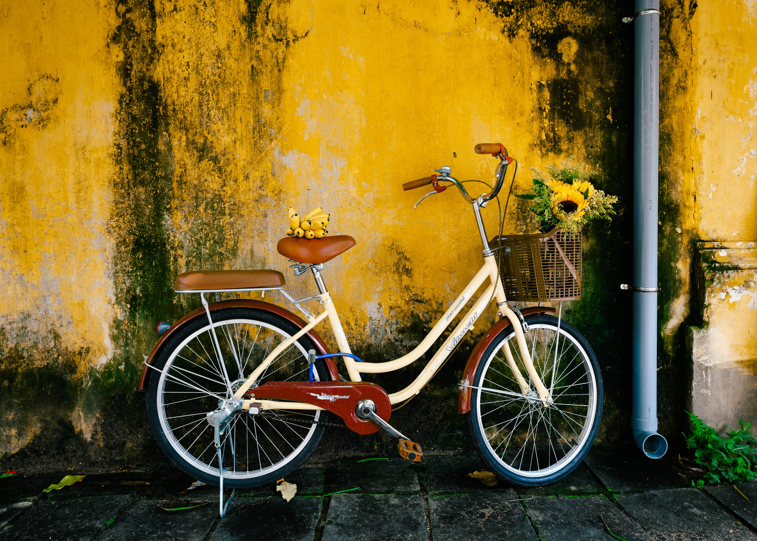 Yellow bike well