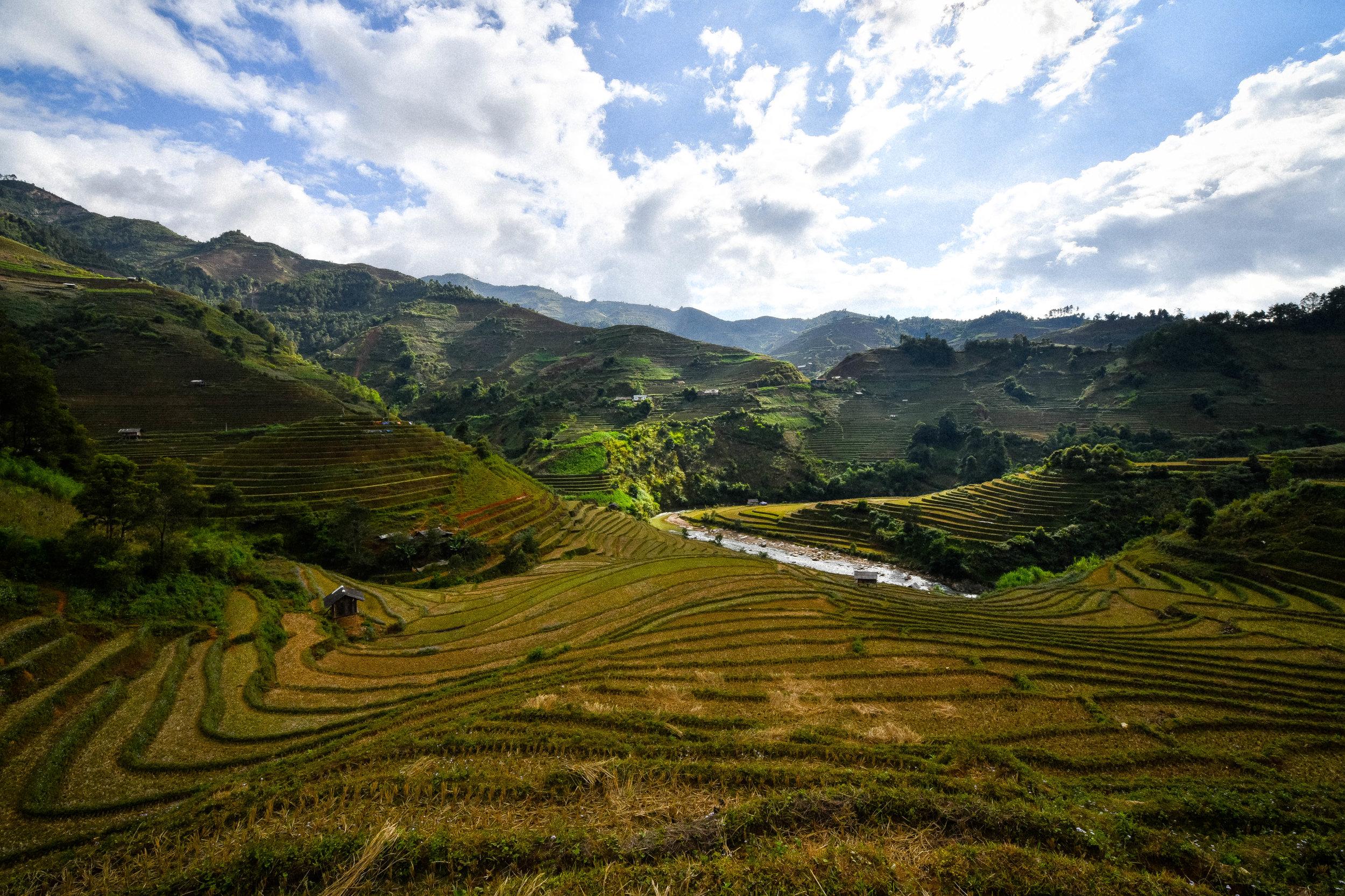 rice fields in mu cang chai